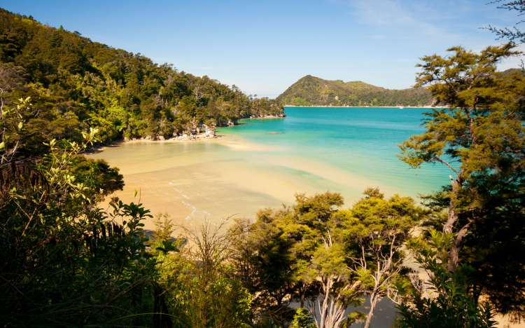 Beach at Abel Tasman National Park