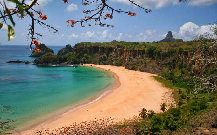 Baia do Sancho Beach - Brazil
