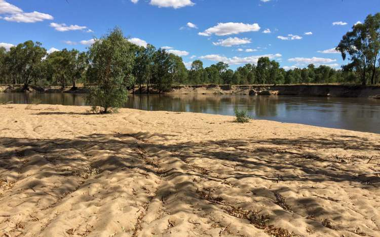 Platt Beach on the Murrumbidgee River