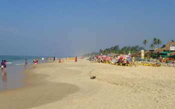 Benaulim Beach - India