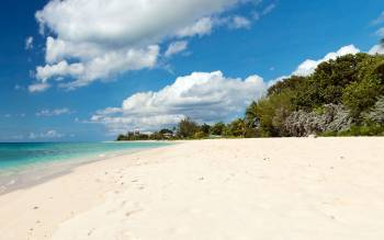 Brandons Beach - The Caribbean