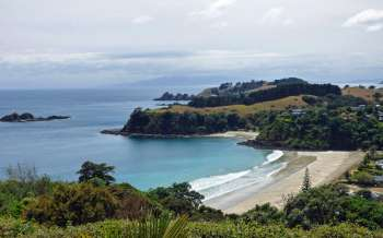 Little Palm Beach - New Zealand