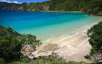 Oke Bay - New Zealand